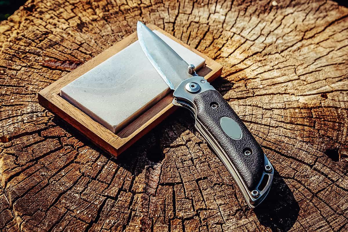 Best Pocket Knife Sharpener of 2021 (Guide & Reviews)