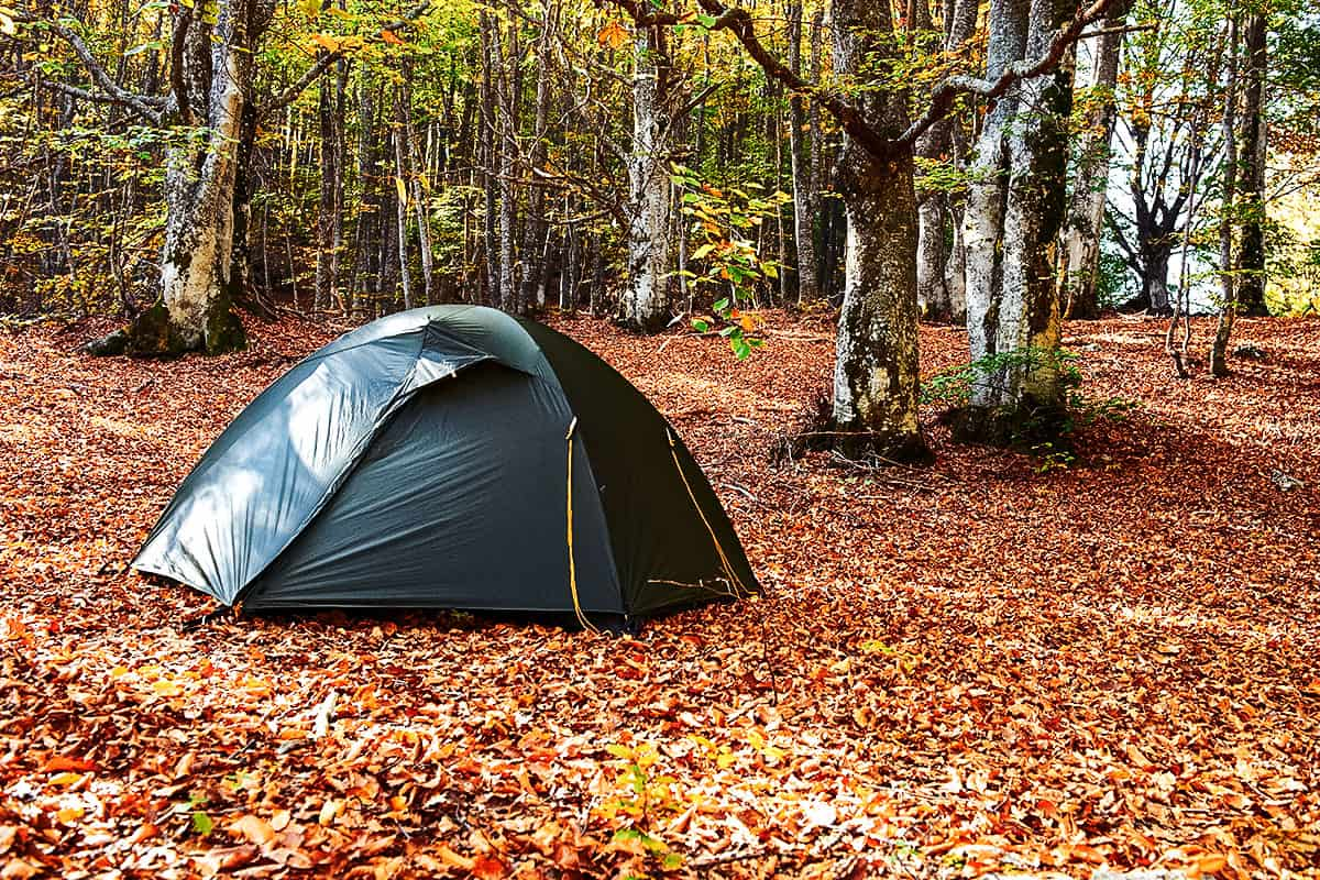 Best Instant Tent of 2021 (Guide & Reviews)