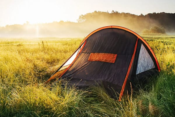 Pop up tent on field at sunrise