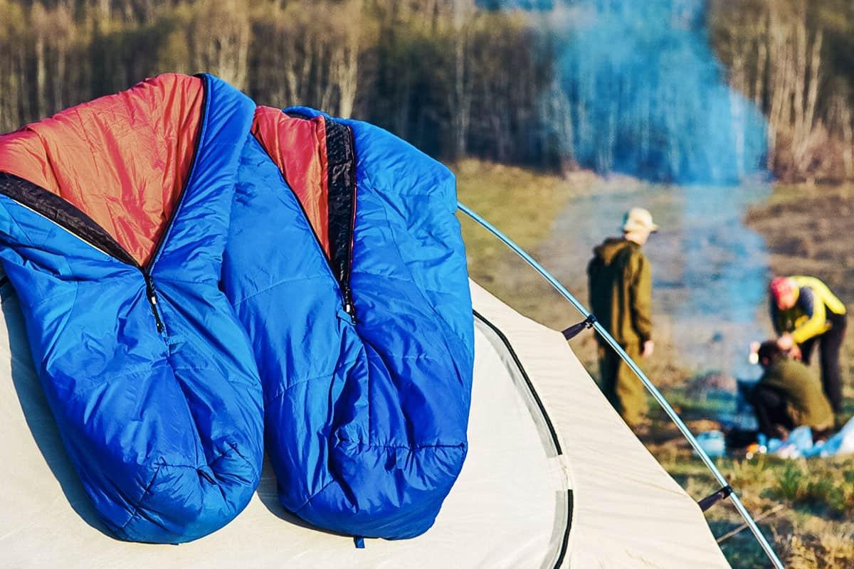 Best Backpacking Sleeping Bag Under $100 of 2021 (Guide & Reviews)