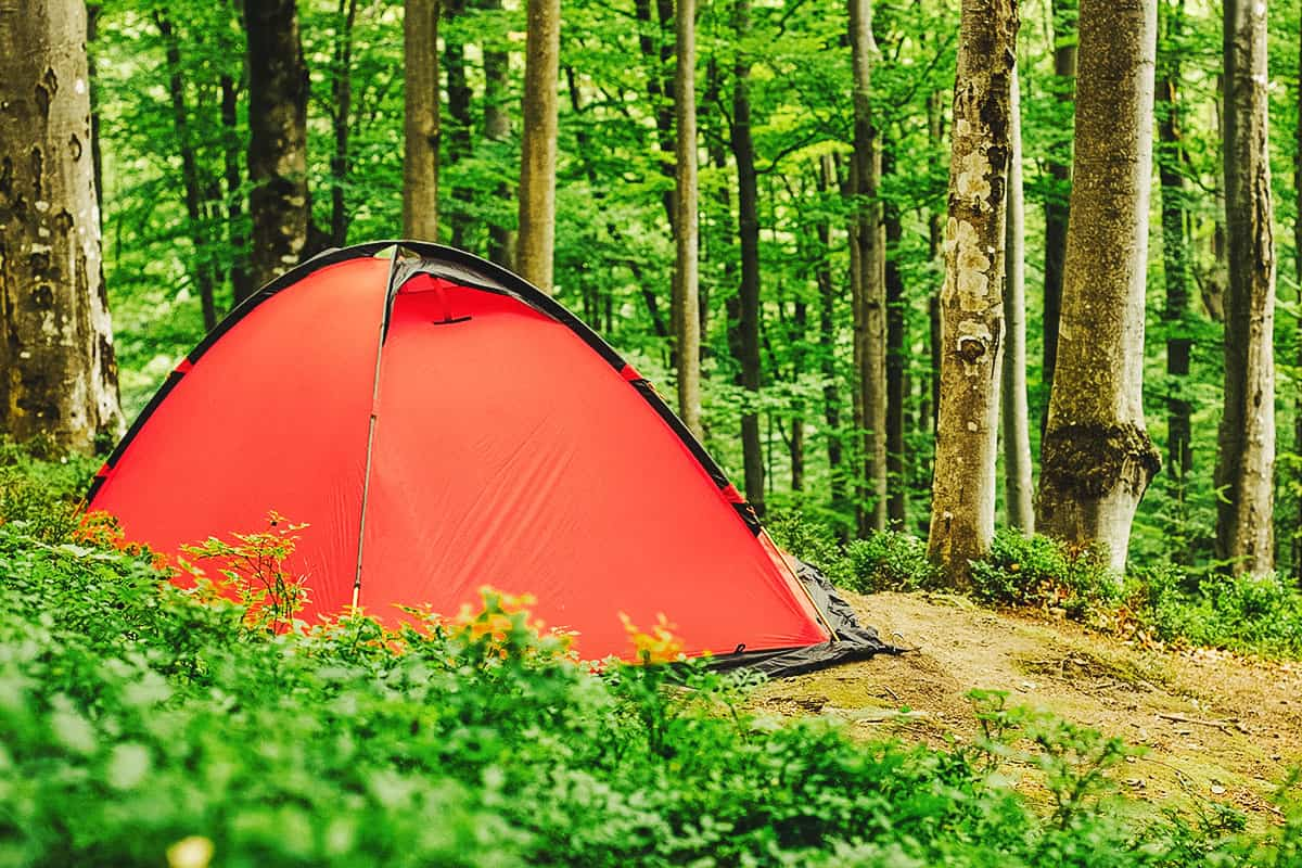 Best Backpacking Tent Under $100 of 2021 (Guide & Reviews)