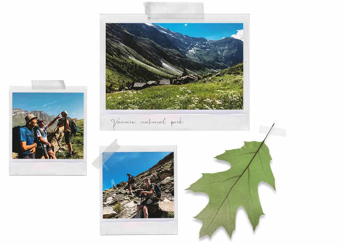 Collage of polaroids about a backpacking trip and a green leaf isolated