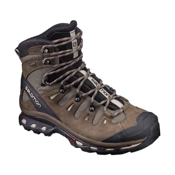 Salomon Men's Quest 4D 2 GTX Hiking Boot on white background