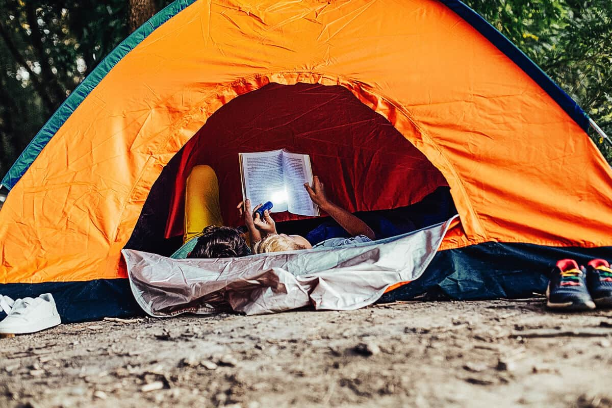 16 Best Camping Books for Kids (Updated 2020)